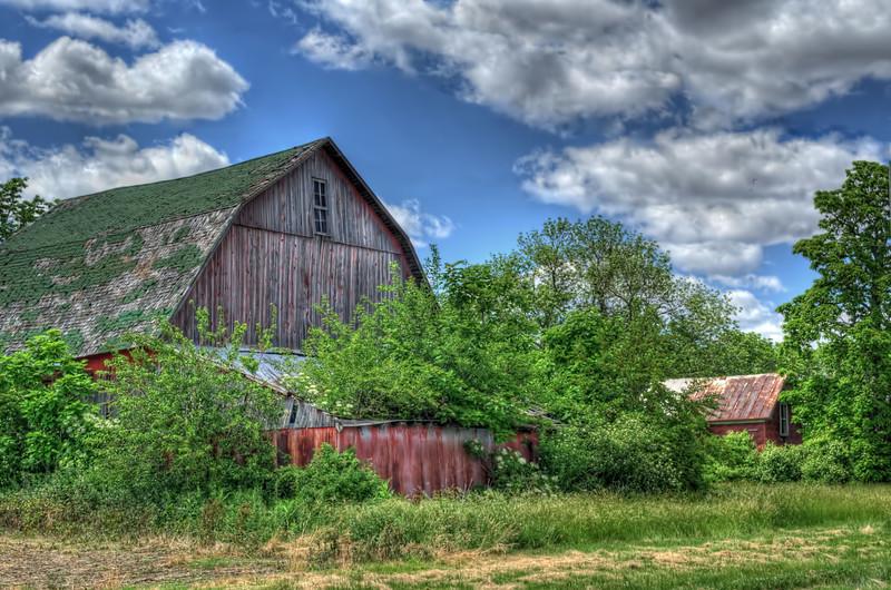 Forever Forgotten Farm