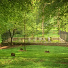 Butler Family Grave Yard