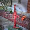 Rose's Well Pump