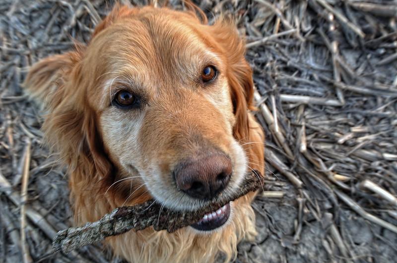 Hi I'm Maggie.....Let's Play !!