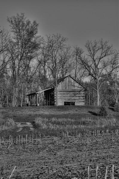 Old Log Cabin in B&W