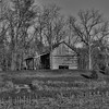 Old Log Cabin in B&W