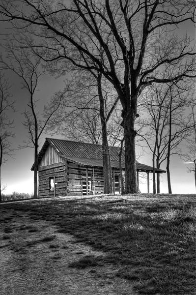 Pioneer Cabin in B&W