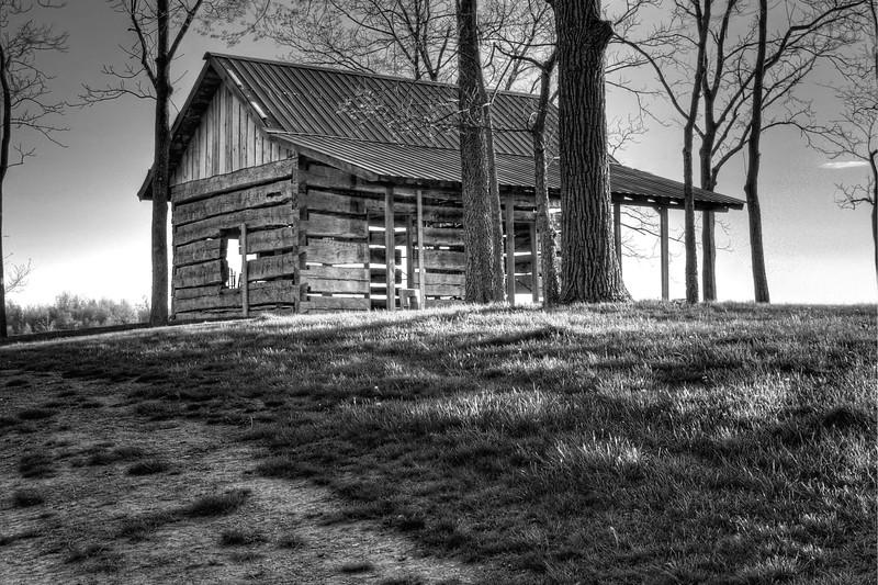 Log Cabin in B&W