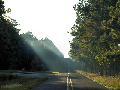 Early morning sun shining through the lifting fog. Taken while out shooting fall foliage in central Louisiana. Oly E510, ZD50/f2