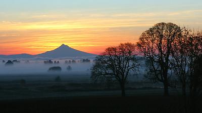 Scappoose Sunrise (52049186)