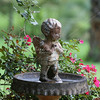 Old bird bath with cherub and roses in the background