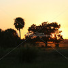 Sunset glow in Florida_SS6062