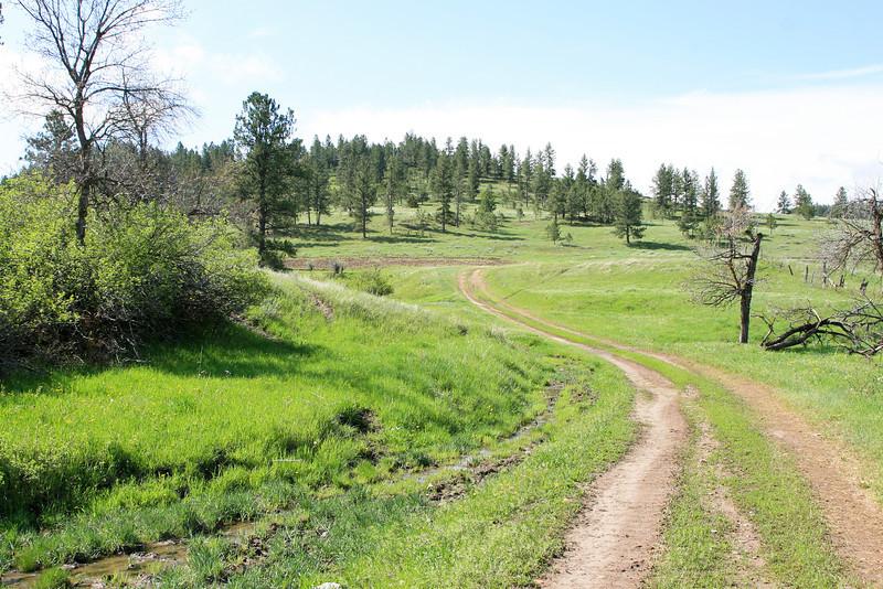 Mountain trail_SS85048
