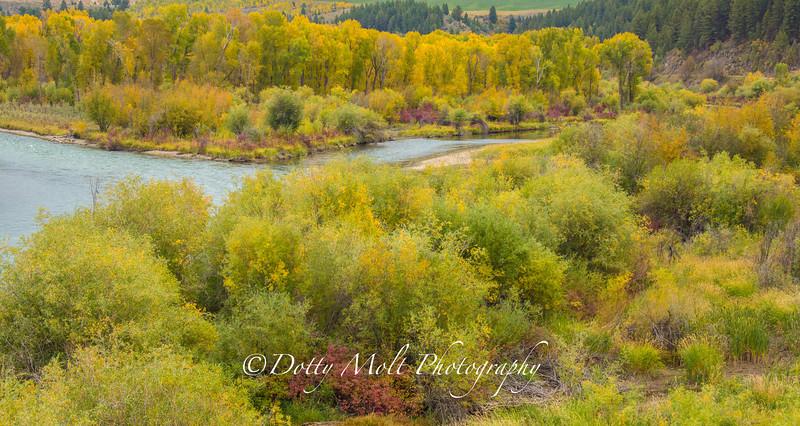 Snake River winding through Swan Valley