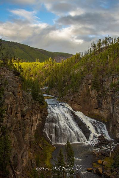 Gibbons Falls Yellowstone National Park