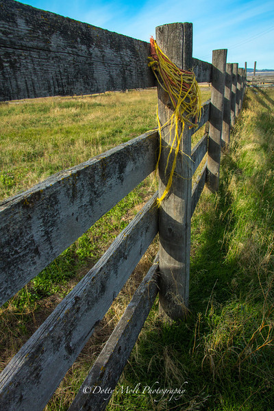 Roped Fence