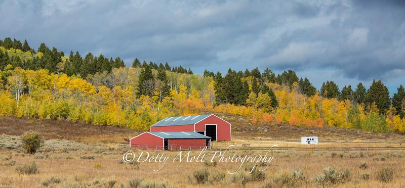Red Barn in Autumn near Henrys Lake
