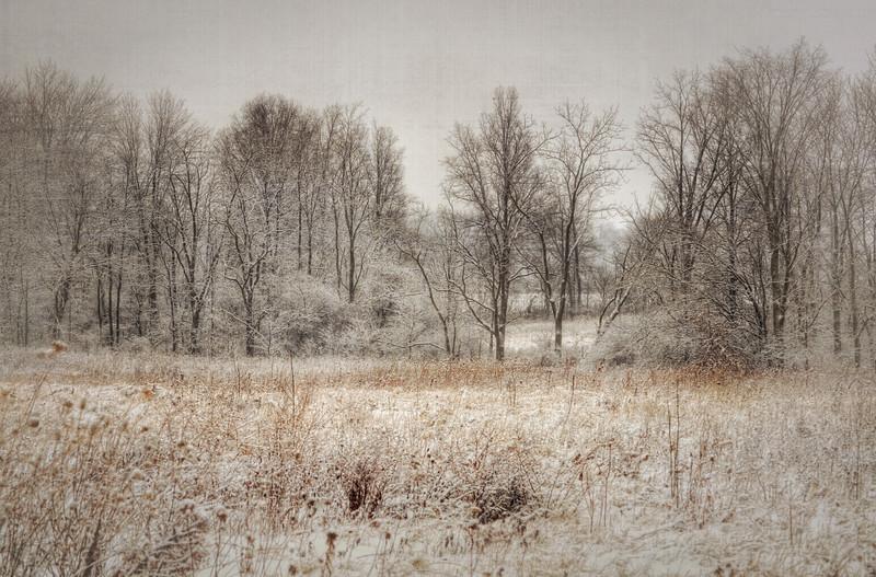 Winter Wonderkand