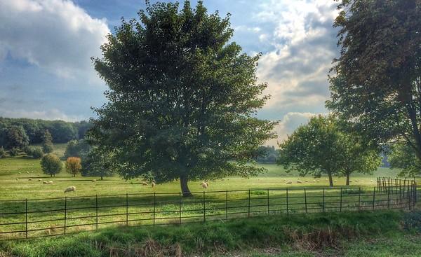 West Dean Gardens - Sussex