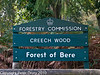 09 Oct 2010 - Creech Wood. Copyright Peter Drury 2010