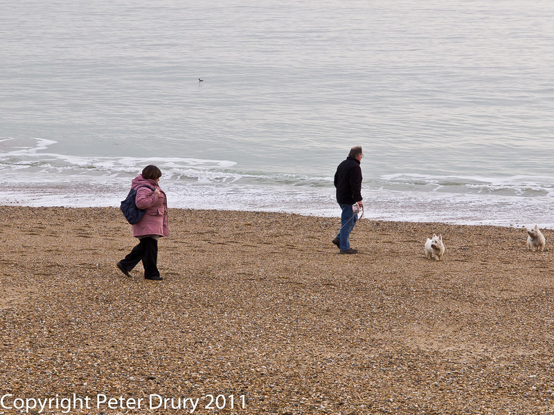 20 February 2011. On the beach. Copyright Peter Drury 2011