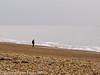 20 February 2011. On the beach. Copyright Peter Drury 2011
