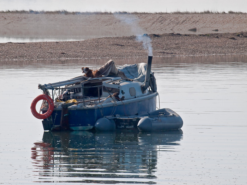 Dinnertime in the galley. Copyright Peter Drury 2010<br /> It's high tide in the harbour. The boat is in the shallows near the shore and there is just about enough time to rustle up a meal. Note how the chimney is taking away the smoke and fumes to keep the confines of the galley comfortable. The bulldog meanwhile knows his turn for food will come as it basks in the sun on the cabin roof,