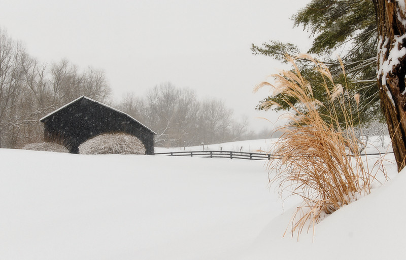 Black barn on Lower River Rd in Rabbit Hash, KY