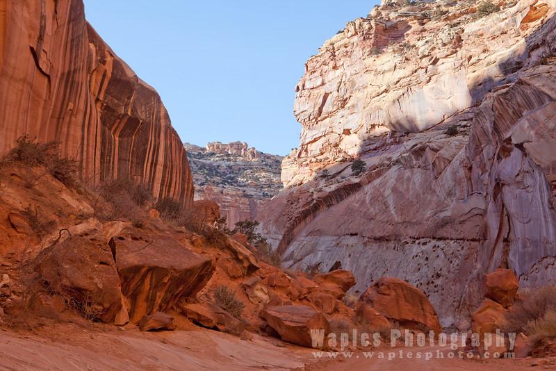 Black Streaked Canyon Wall