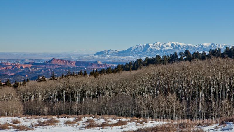 Aspens and Mount Ellen: 11,522 feet