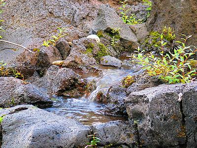 Rogue River (33713150)