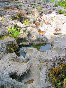 Rogue River (33713155)