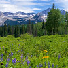Crested Butte 307