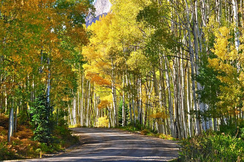 Colorado Fall 6
