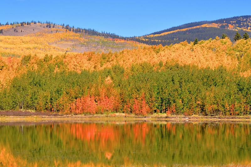 Colorado Fall 24