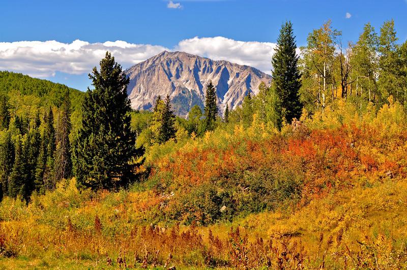 Colorado Fall 4