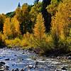 Colorado Fall 8