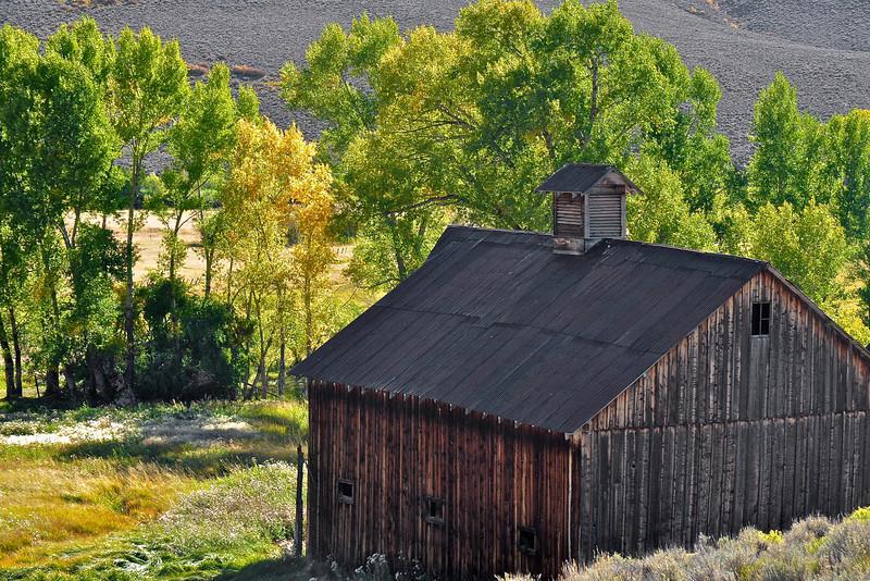Colorado Fall 20
