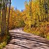 Colorado Fall 10
