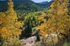 San Juan range Colorado - aspens