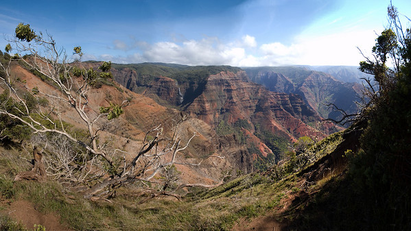 Part of Waimea Canyon, Kauai, Hawaii