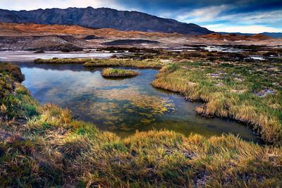 Salt Creek Pond Death Valley CA