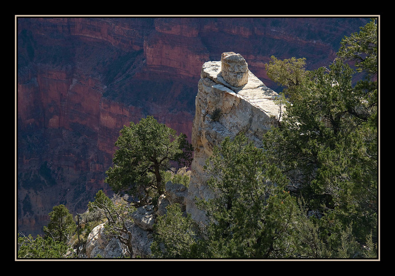 View from North Rim of Grand canyon