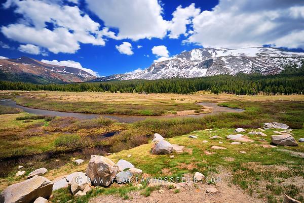 Yosemite National Park (black & white version available)