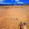 Footprint in desert