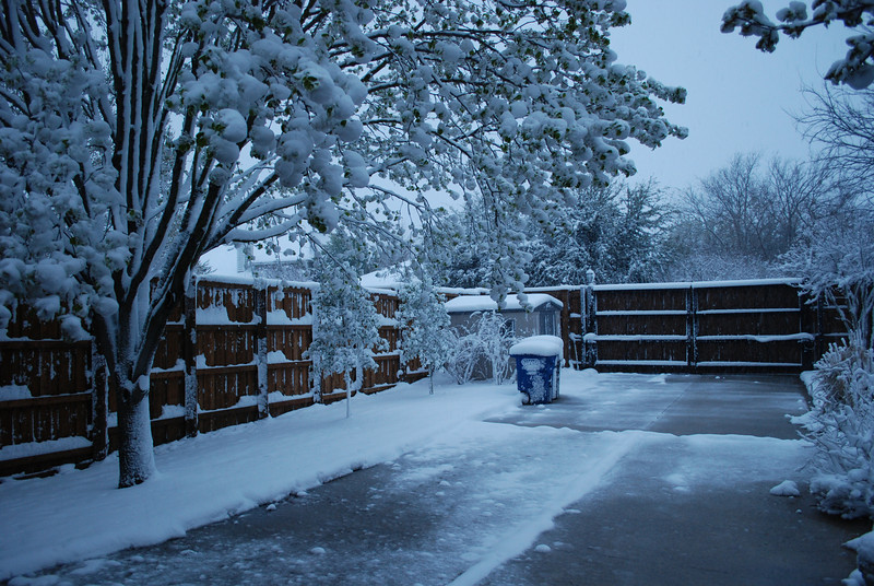 """We awoke to another 8"""" snow this morning (3-21-10).  72 yesterday and will be 65 again tomorrow.  Ain't N. Texas grand?"""