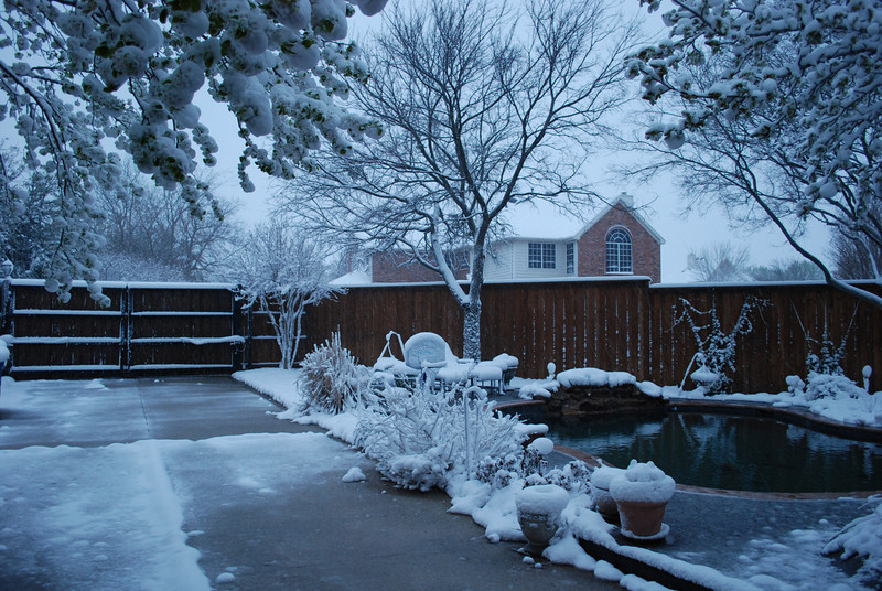 "We awoke to another 8"" snow this morning (3-21-10).  This was taken around 6:30, just before the heaviest snow came."