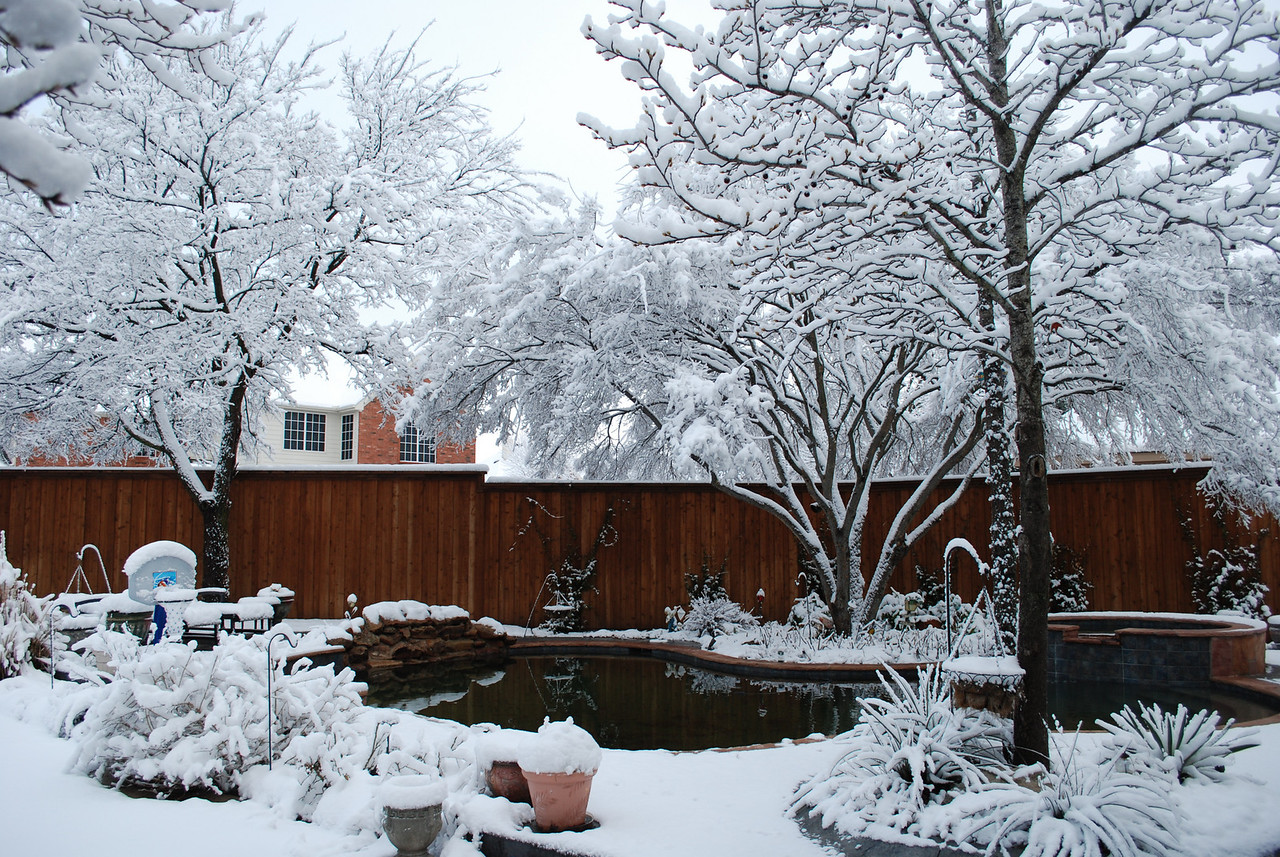 "A record single day snow in Dallas - 12.5"" before it was all said and done (2-11-10)."