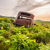 28  G Lupine and Balsamroot Abandoned Car Clouds V