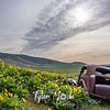 15  G Lupine and Balsamroot Abandoned Car Clouds S