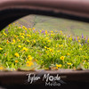 30  G Lupine and Balsamroot Abandoned Car Window
