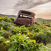 25   G Lupine and Balsamroot Abandoned Car Clouds V