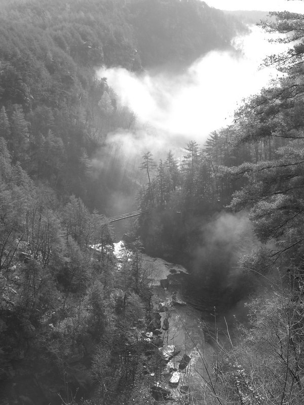 Tallulah Gorge, Georgia, April 1 - shot in Black and White - I was testing the camera.  This is the view looking towards the swing bridge from the South rim observation gazabo. Taken about 8:45 am