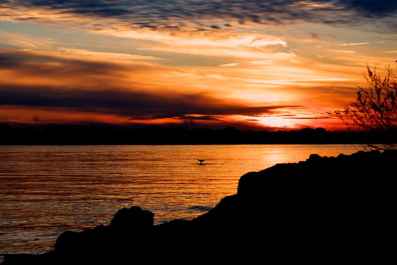 Dames Point Park Sunset